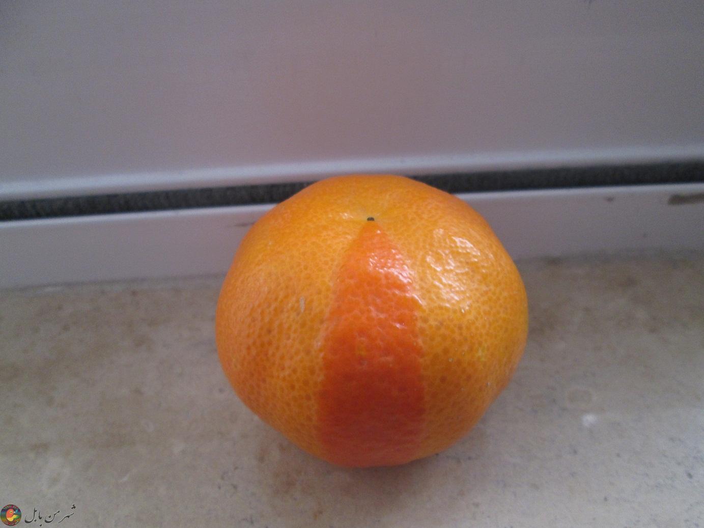 نارنگی با دو پوست متفاوت...