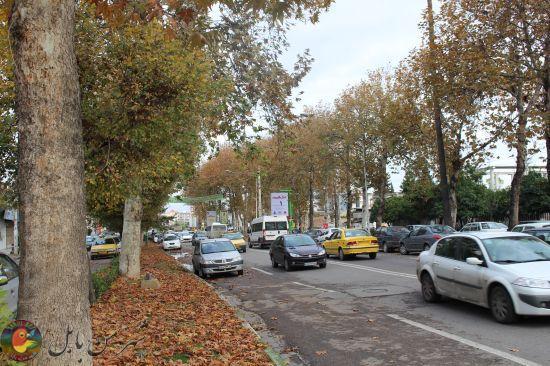 پاییز در شهر بهارنارنج