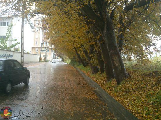 گزارش تصویری  پاییز در شهر بهارنارنج
